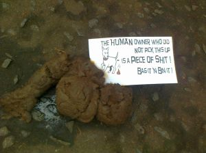 Labelled dog poo