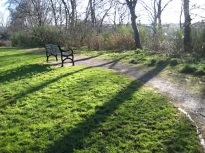 Inverleith Park scene