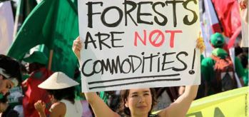 Forests are not commodities!
