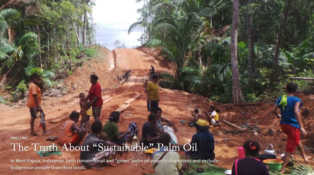 """There is no such thing as """"sustainable"""" palm oil."""